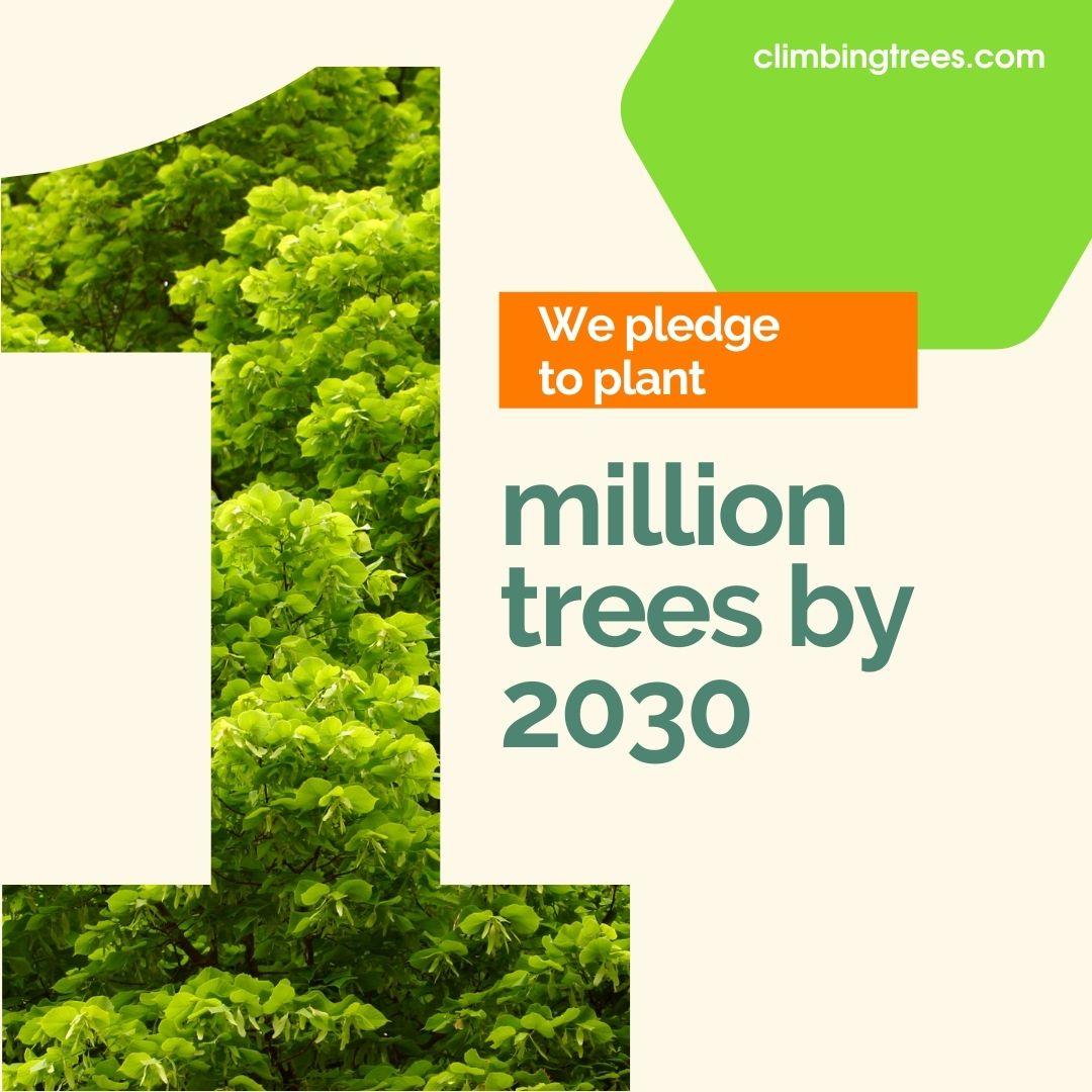 Our One Million Trees Pledge 1