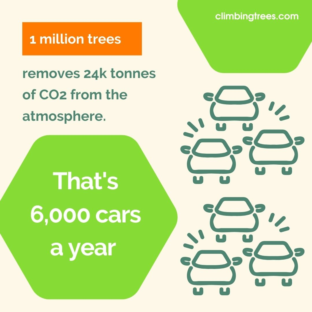 Our One Million Trees Pledge 2
